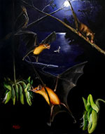 It is never a quiet night at La Venta during the mid-Miocene. Palynephyllum antimaster, the omnivorous bat, may be either foraging on a tasty moth or taking sweet sip of nectar, while the shrew opossum (Pithiculites) scampers out for a midnight snack. Credit: Michael Hanson