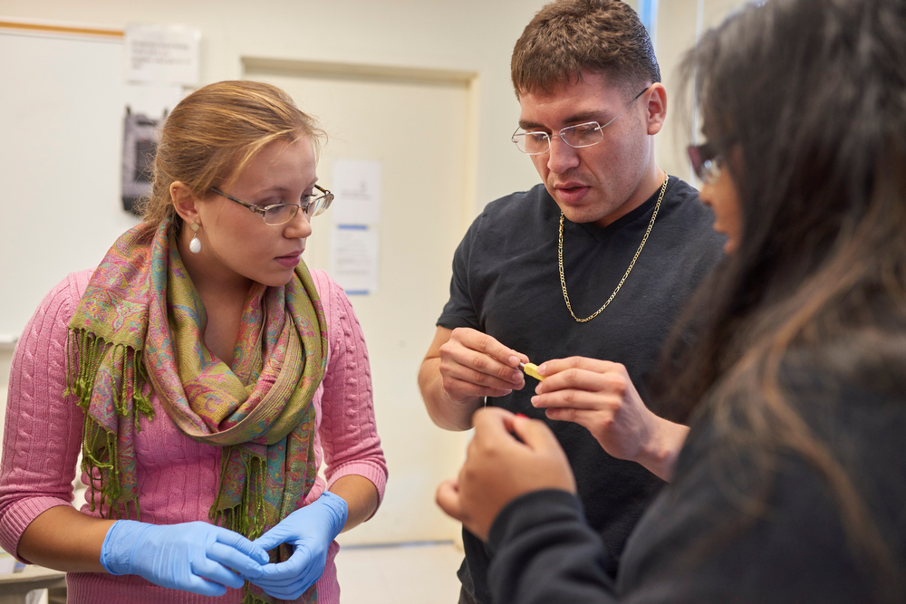 Students work in a biology lab at Stony Brook University in Long Island
