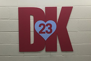Dk 23