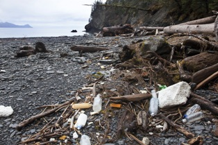 Marine debris in bulldog cove