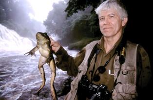Russ mittermeier w frog