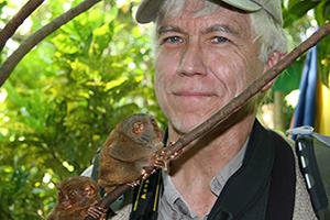 Russ tarsiers website 2