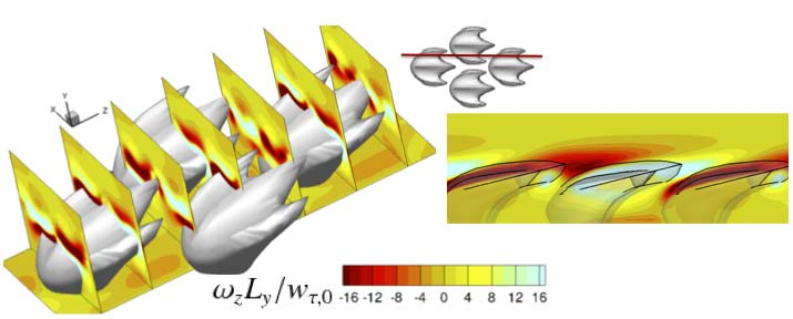Computer simulations unveil flow around shark skin Credit: A. Boomsma and F. Sotiropoulos/UMN