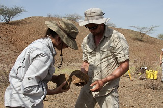 Harmand and Lewis examine stone tool findings at the excavation site in Kenya.