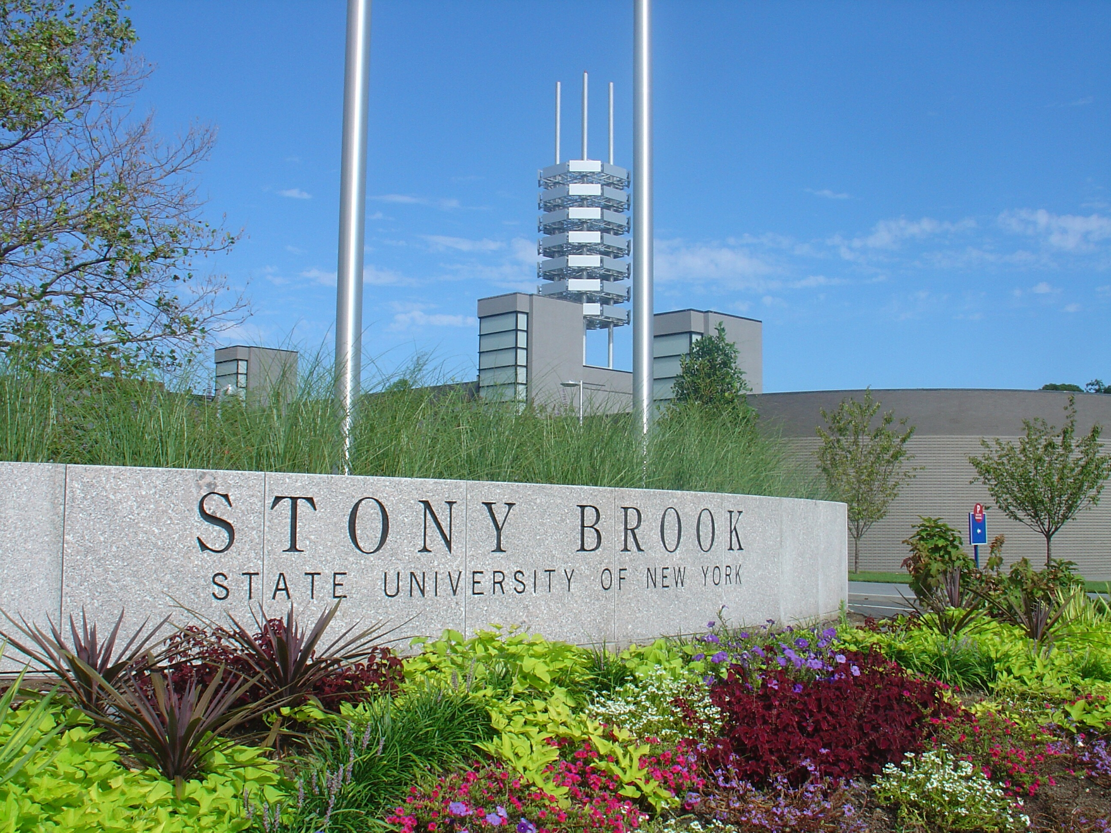 Stony brook university 1