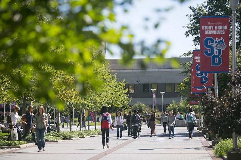 Students walking Stony Brook Academic Mall