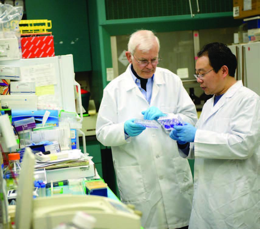 Wimmer lab