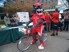 Wolfie bike share web size