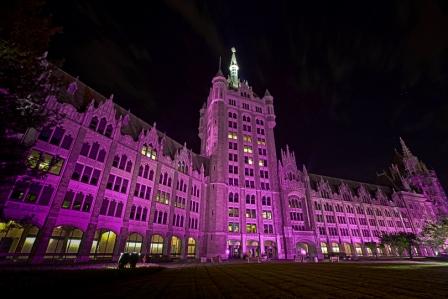 Albany goes purple