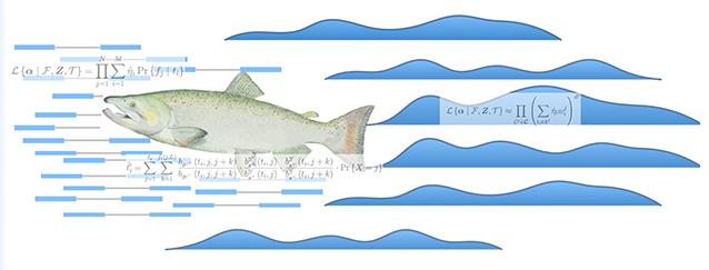 Salmon 1 1