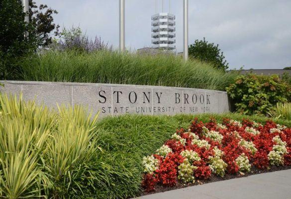 Stonybrook uni 2