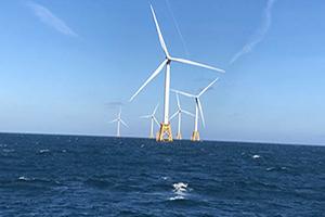 Wind 1 300