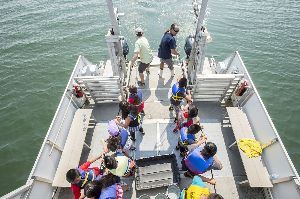 Southampton, NY - 6/12/15 - Students from Mrs. Taddeo's and Mrs. Leszczynski's fourth grade classes at the Tuckahoe School participate in an exploration of Shinnecock Bay aboard the RV Peconic from the Marine Sciences Center at Stony Brook Southampton in Southampton, NY June 12, 2015.    (Photo by Gordon M. Grant / Stony Brook University)