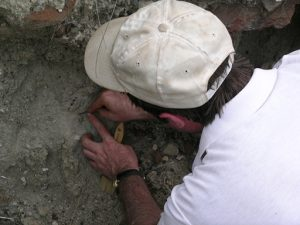 James rossie escavating at simiolu site