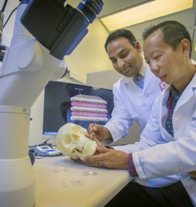 Dr. Srinivas Myneni (left) and Dr. David Lam of Stony Brook School of Dental Medicine illustrate the potential use and placement of a nanomaterial-based bone regeneration device.