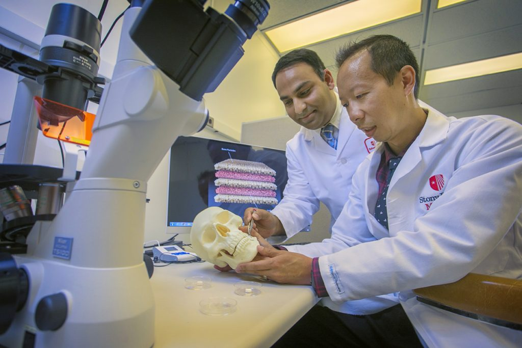 Dr. Srinivas Myneni (left) and Dr. David Lam illustrate the potential use and placement of a nanomaterial-based bone regeneration device.