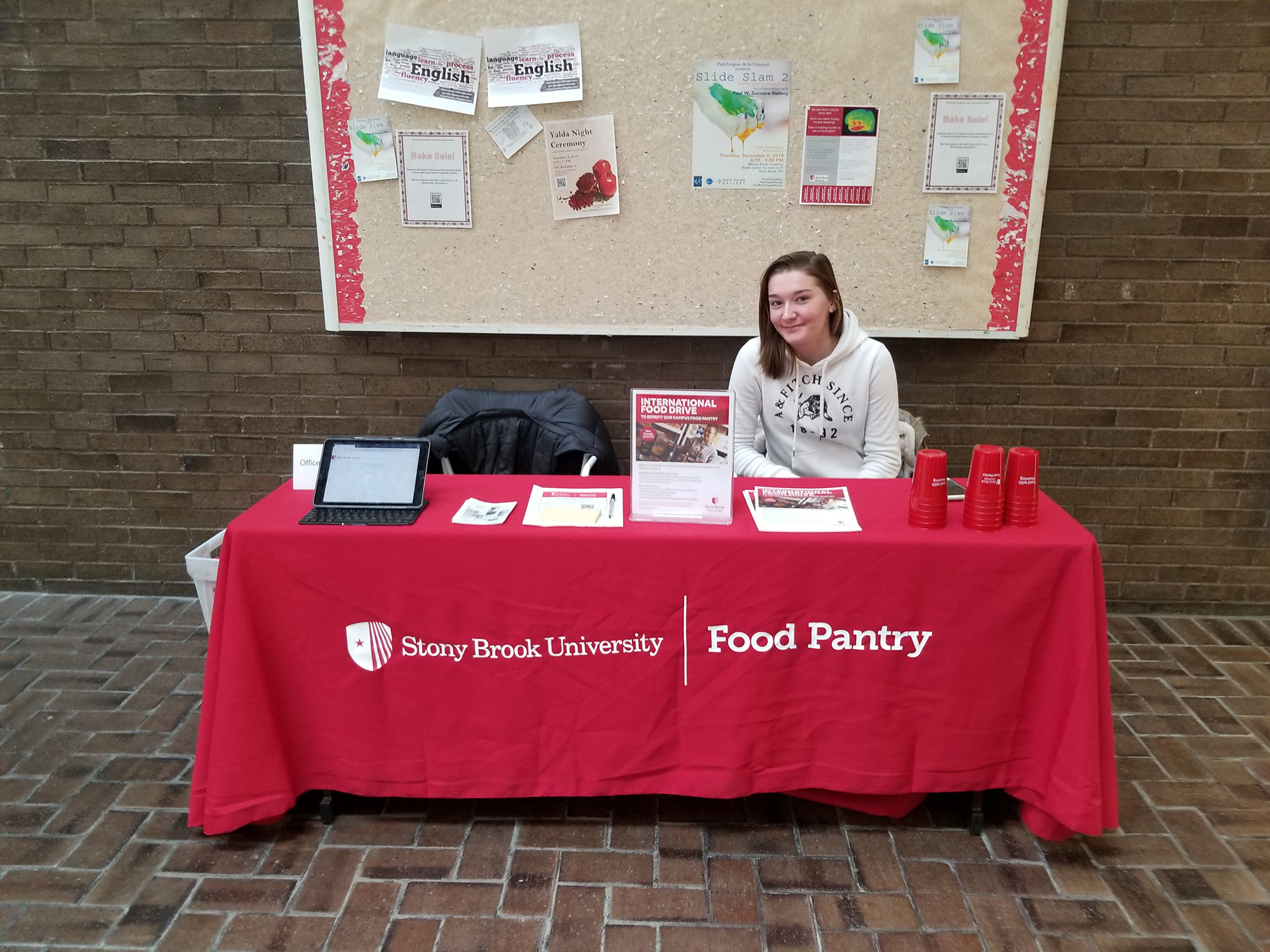 Sarah Scheibert hosting a table in the Library.