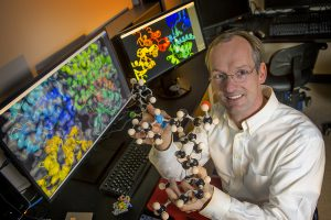 Markus Seeliger, PhD, with molecular models of indiscriminate drug binding kinases.