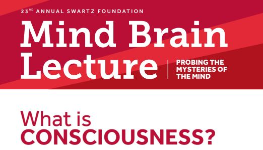 Mind brain lecture slide