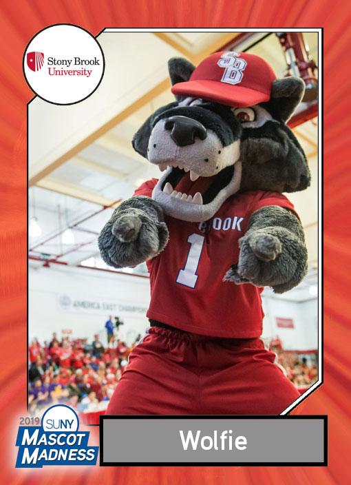 Wolfie sportscard