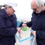 Beach cleanup 2019 10