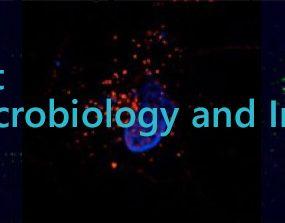 Micro immuno logo