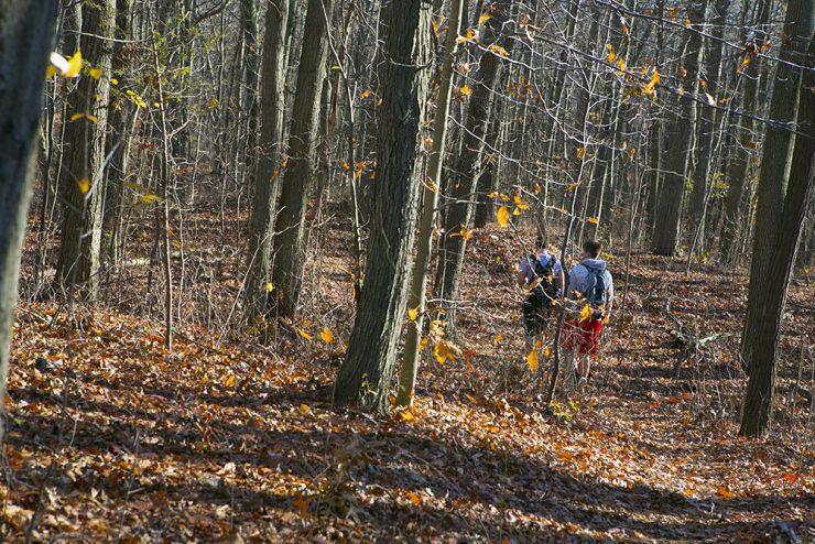 Ashley Schiff Nature Preserve