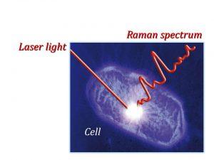 Lasermarineimage