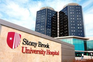 Stony brook 740x491