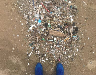 Plastic pollution on our shorelines is plain to see, but concern is mounting over the impacts of microplastics in our waters. Credit: Paul C. Focazio, NYSG