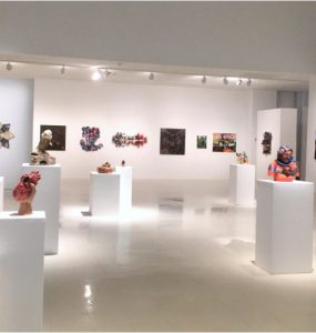 Zuccaire gallery