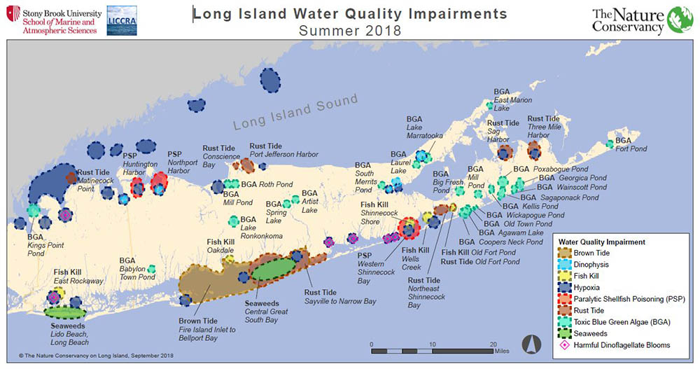LOog Island map