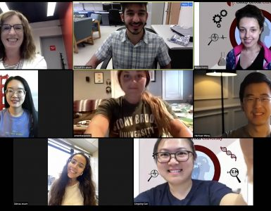 ECE faculty and graduate students during the WISE virtual camp
