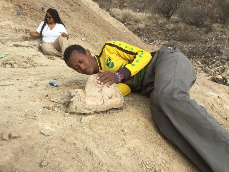 Buluk bonebed excavation