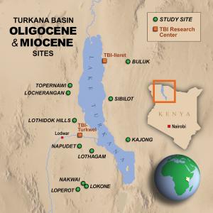 Turkana basin oligocene and miocene sites