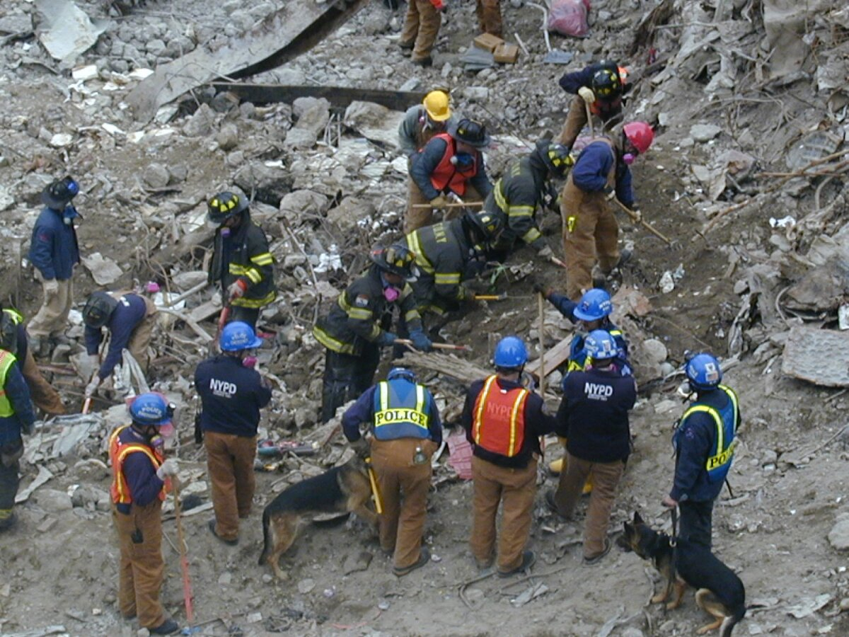 A five-year NIH-supported study will involve cognitive monitoring of WTC 911 responders.