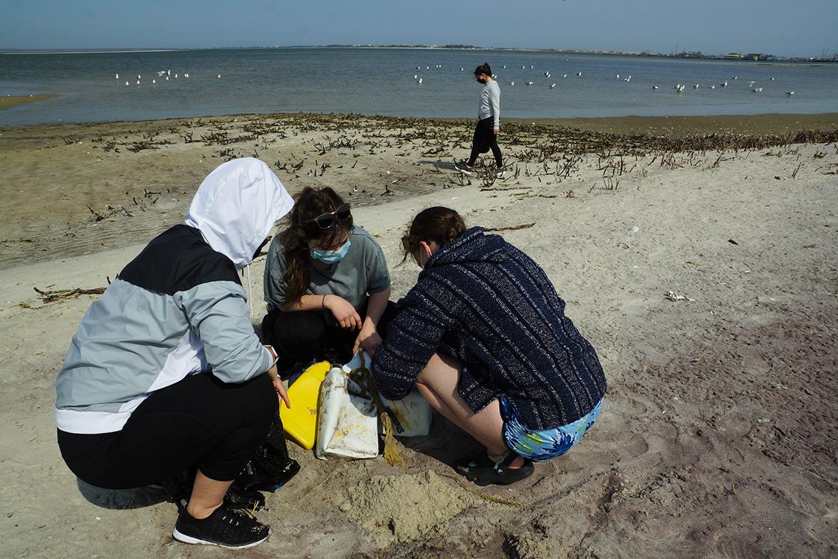Beach cleanup2