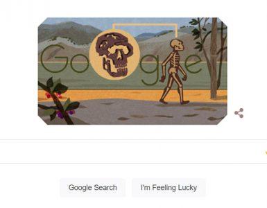 Turkana boy google