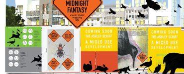 Devlopers midnight fantasy