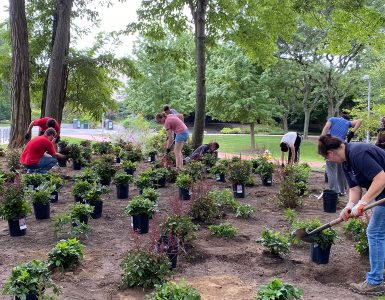 Students plant new greenery near the 9/11 Memorial Arch.