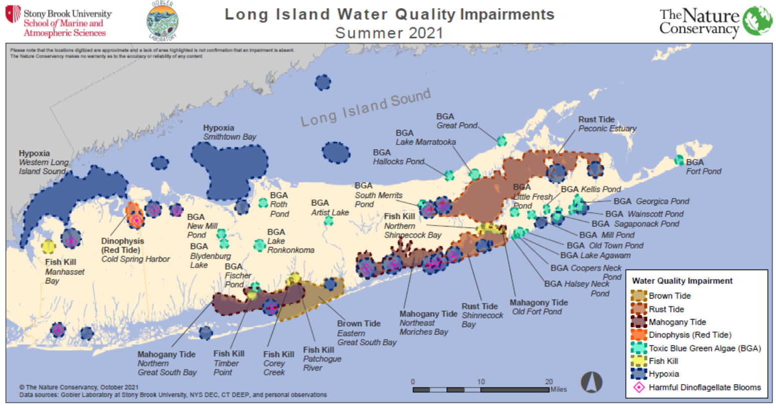 Water quality impairments across Long Island during Summer 2021
