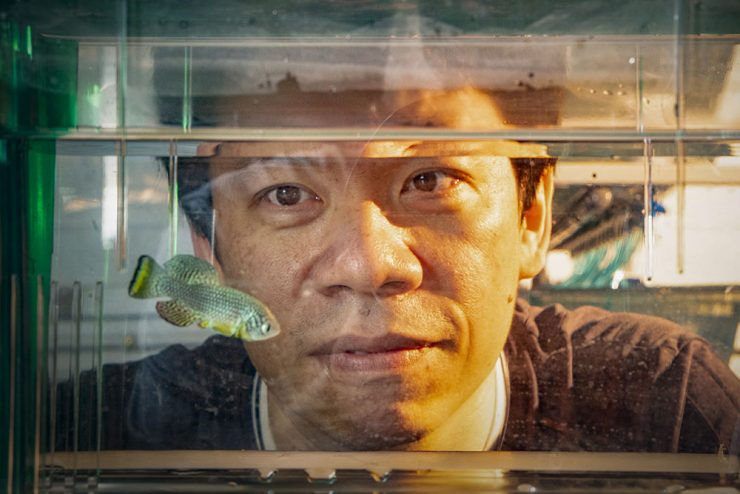 Hu chi kuo fish